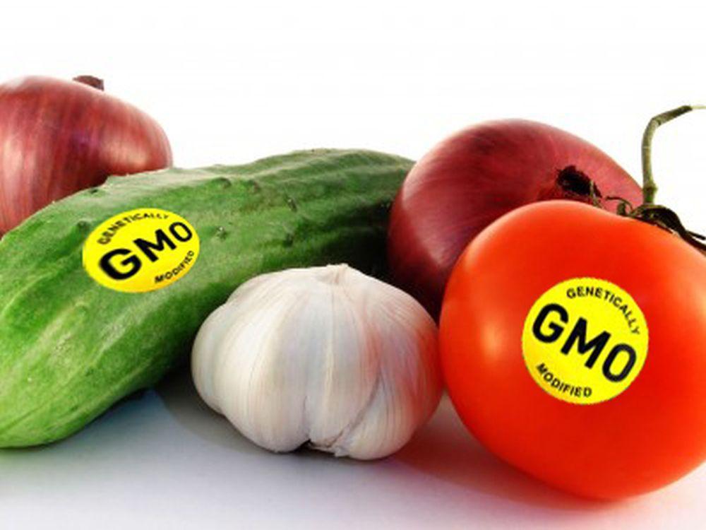 შეიცავს თუ არა საფრთხეს გენმოდიფიცირებული საკვები