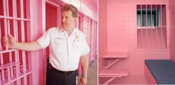 """""""ვარდისფერი ციხე""""- რა მიზნით შეღებეს ყველაფერი ვარდისფრად შვეიცარიის ერთ-ერთ საპატიმროში?"""